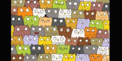 Otras ilusiones ópticas que desafían a Internet Foto:Tumblr.com