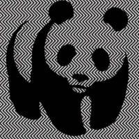 Para hacer consciencia del peligro que corren Foto:WWF