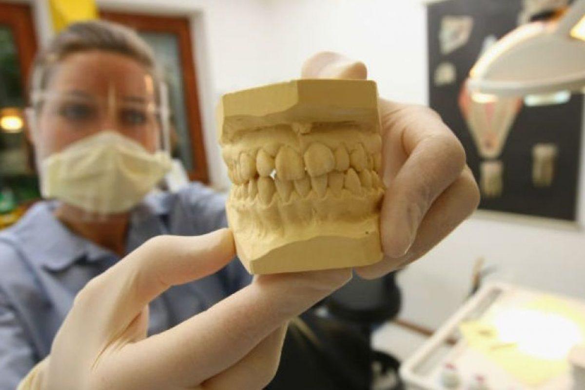 ¿Quieren saber cuántos dientes tienen? Foto:Getty Images