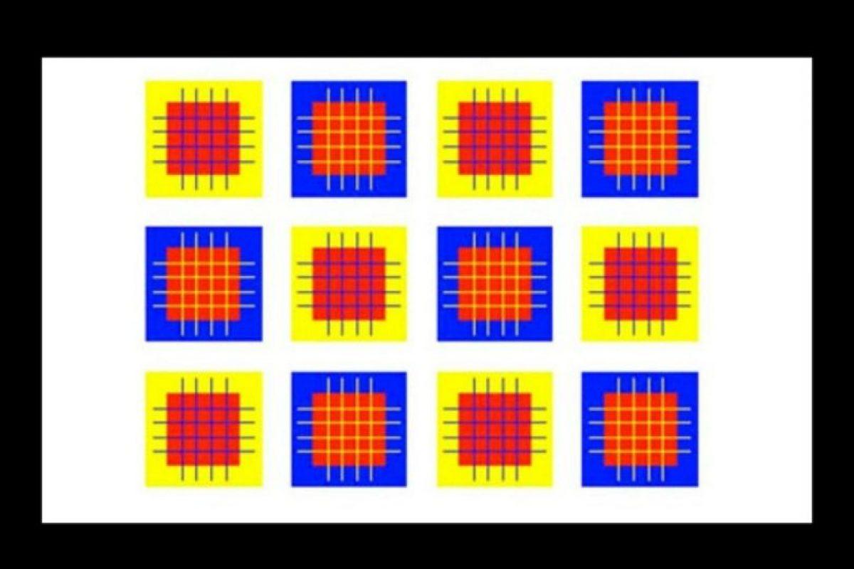 ¿Cuántos colores diferentes ven? Foto:Playbuzz