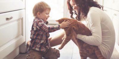 Foto:Shutterstock