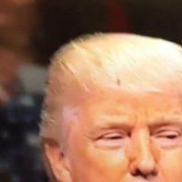 La mosca le robó protagonismo a Trump por 30 segundos. Foto:Reproducción