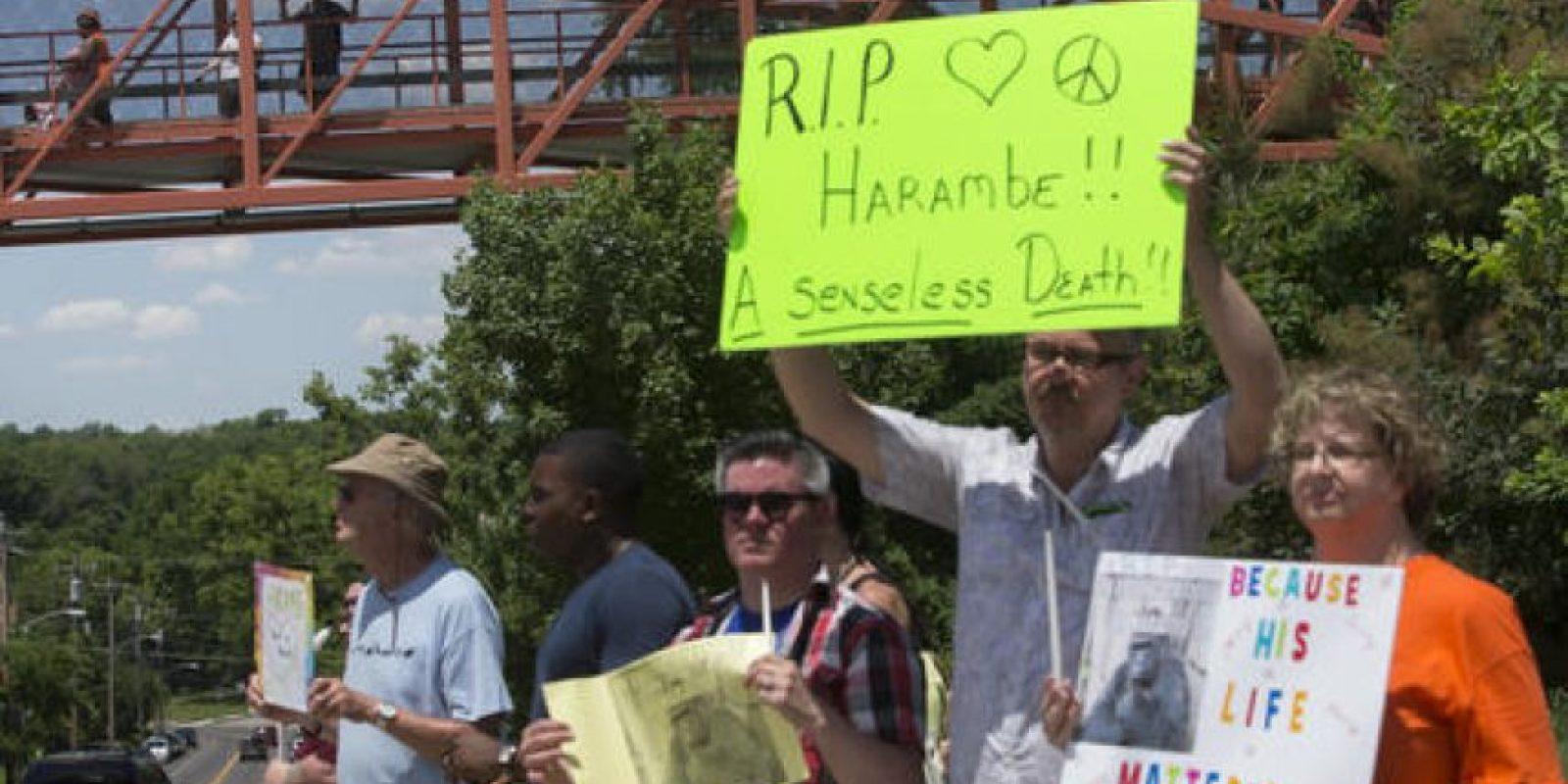 Decenas de personas se manifestaron en Cincinnati con pancartas Foto:AP