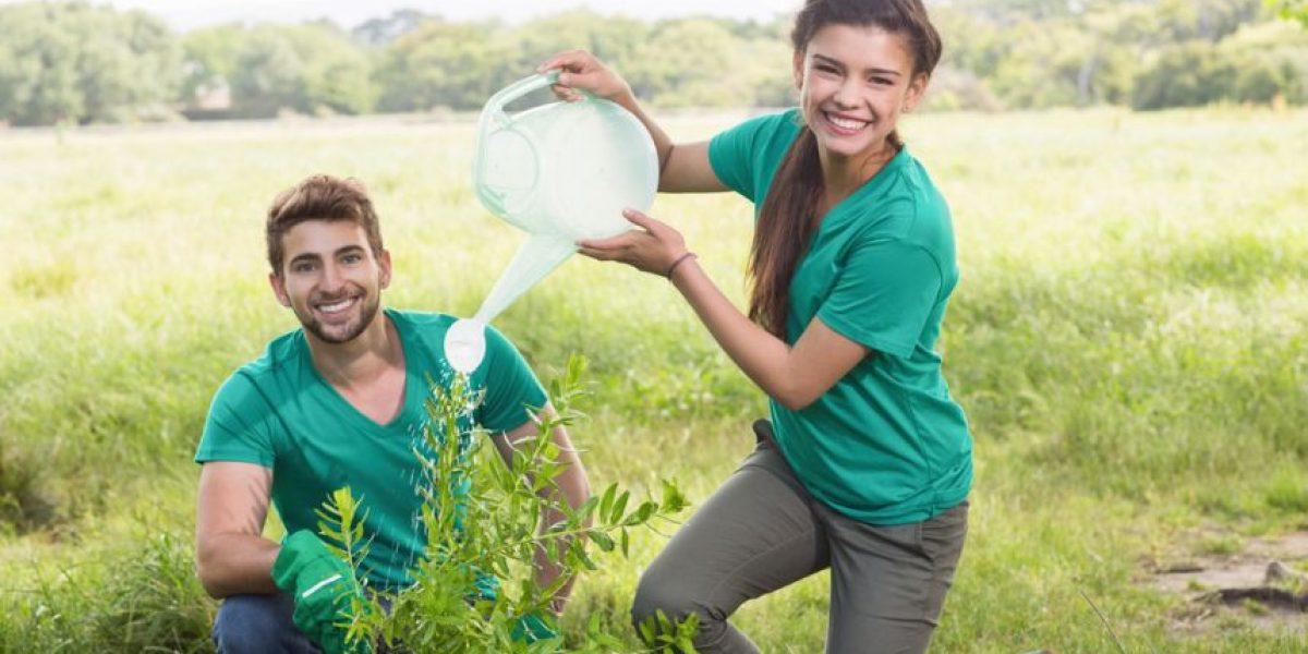 10 actos verdes que puedes hacer para ayudar al medioambiente