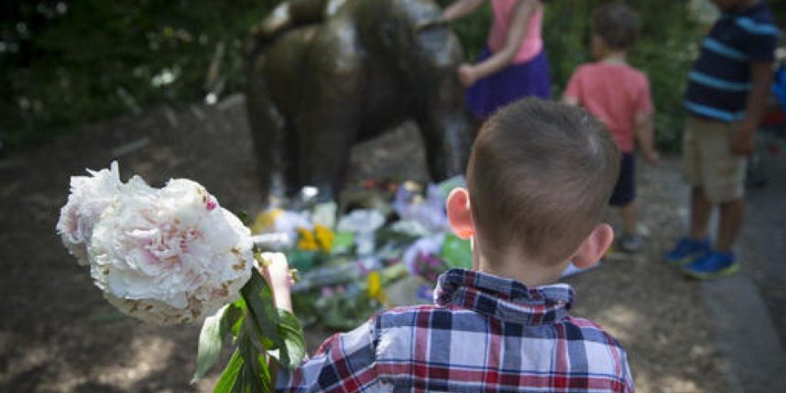 Visitantes del zoológico de Cincinnati homenajearon al primate con flores y cartas. Foto:AP