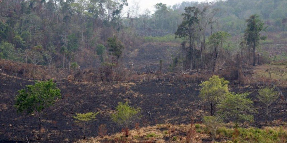 Declaran alerta por canícula que puede incrementar incendios forestales