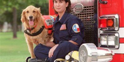 """Murió """"Betragne"""", el último perro rescatista del 11 de septiembre"""