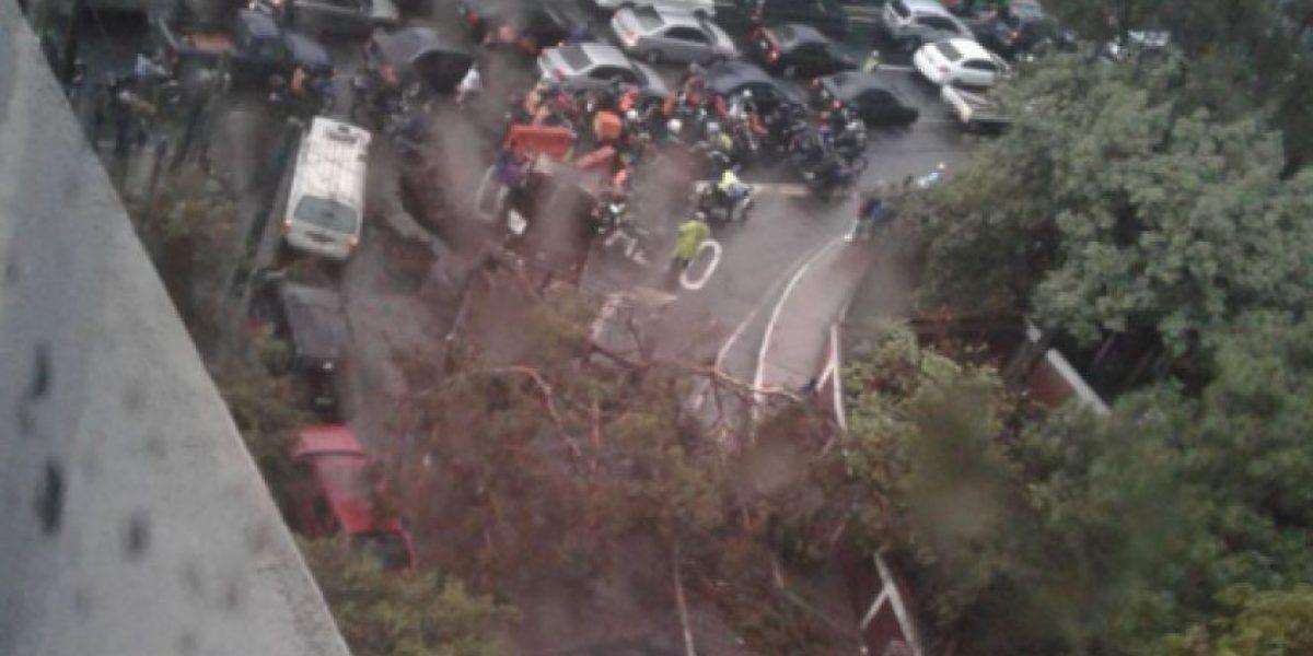 Lluvia deja árboles y vallas caídas, cortes de energía eléctrica y caos vehicular