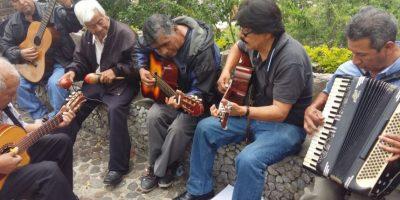 Músicos se reúnen cada domingo en el Cerrito del Carmen para tocar. Foto:Esvin López