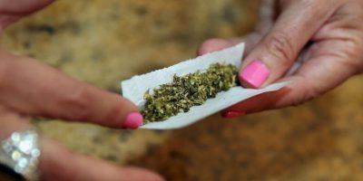 Congreso de la República abre debate sobre uso medicinal y recreativo de marihuana