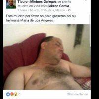 Foto:Facebook/Tiburón mininos gallegos comunidad