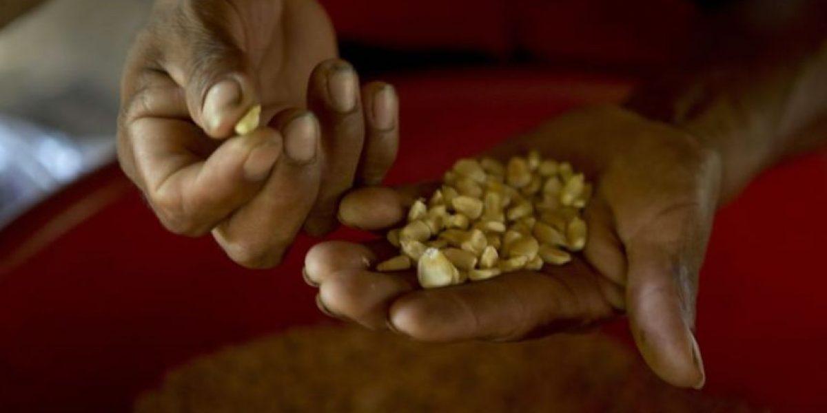 UE donará USD 115 millones para combatir desnutrición en Guatemala