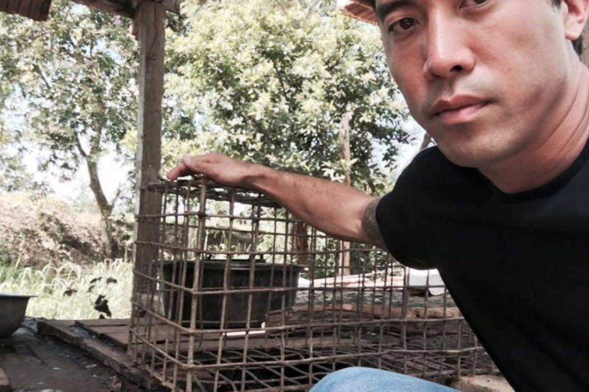 """Año con año aumentan las voces que piden que se le ponga fin a este acto considerado """"bárbaro"""" y """"cruel"""". Foto:The Animal Hope & Wellness Foundation"""