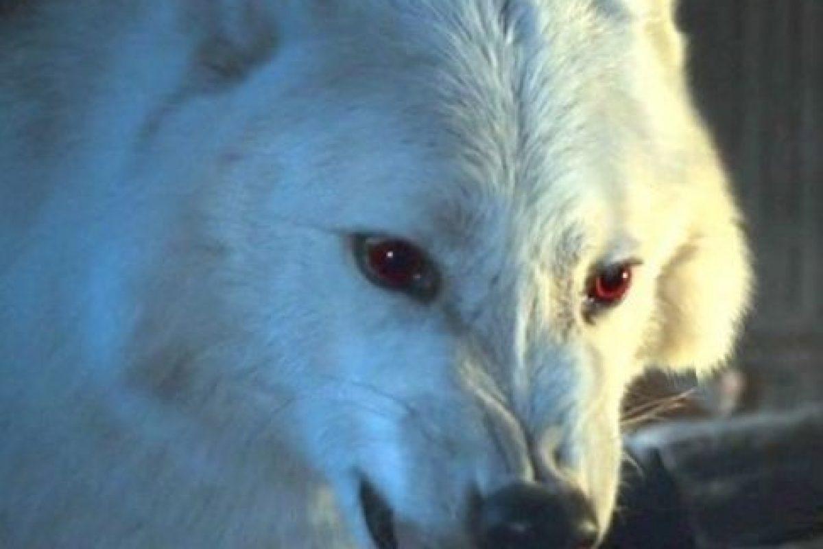 Fantasma en la temporada 6 Foto:Vía HBO