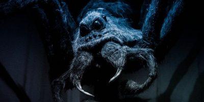Avistan una supuesta araña gigante en Google Earth