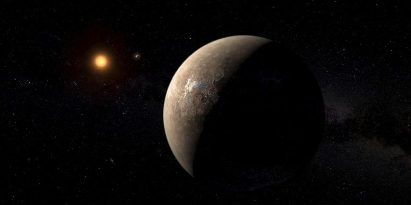 Esta ilustración muestra cómo se vería el planeta y su distancia con su sol Foto:Facebook.com/palereddot