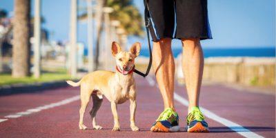 Foto:Shutterstock.co