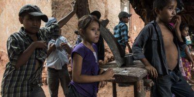 Algunos niños dejan de estudiar para apoyar en el trabajo a sus padres. Foto:Oliver de Ros