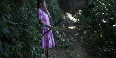 Las mujeres buscan hierbas para reforzar su alimentación. Foto:Oliver de Ros