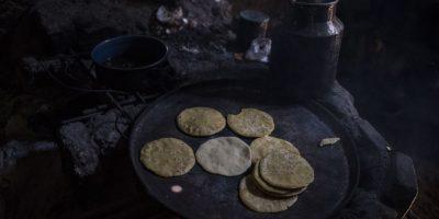 Para alimentarse tienen que comprar maíz amarillo Foto:Oliver de Ros