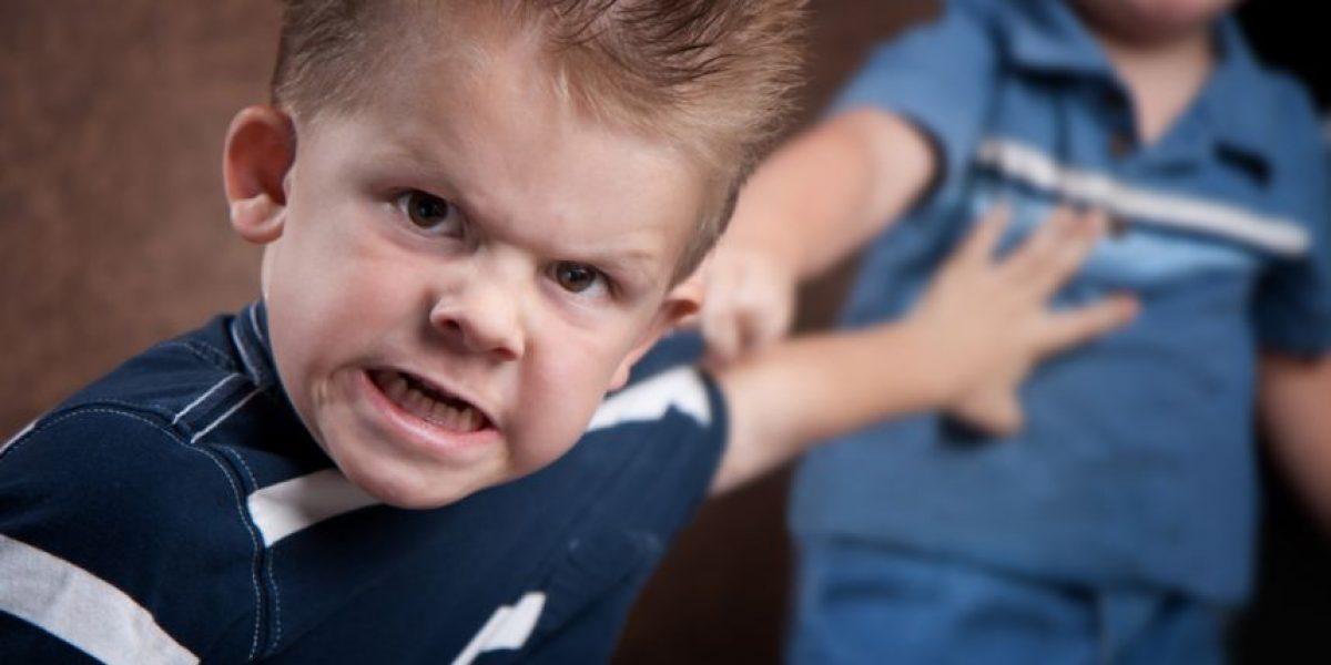 ¡Atención padres! Esto es lo primero que deben hacer si su hijo agrede a otro niño