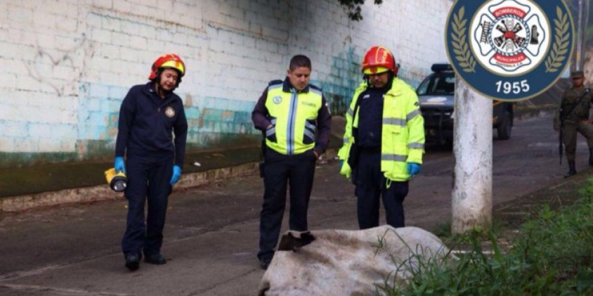 Localizan tres cadáveres frente a escuela en la colonia El Búcaro