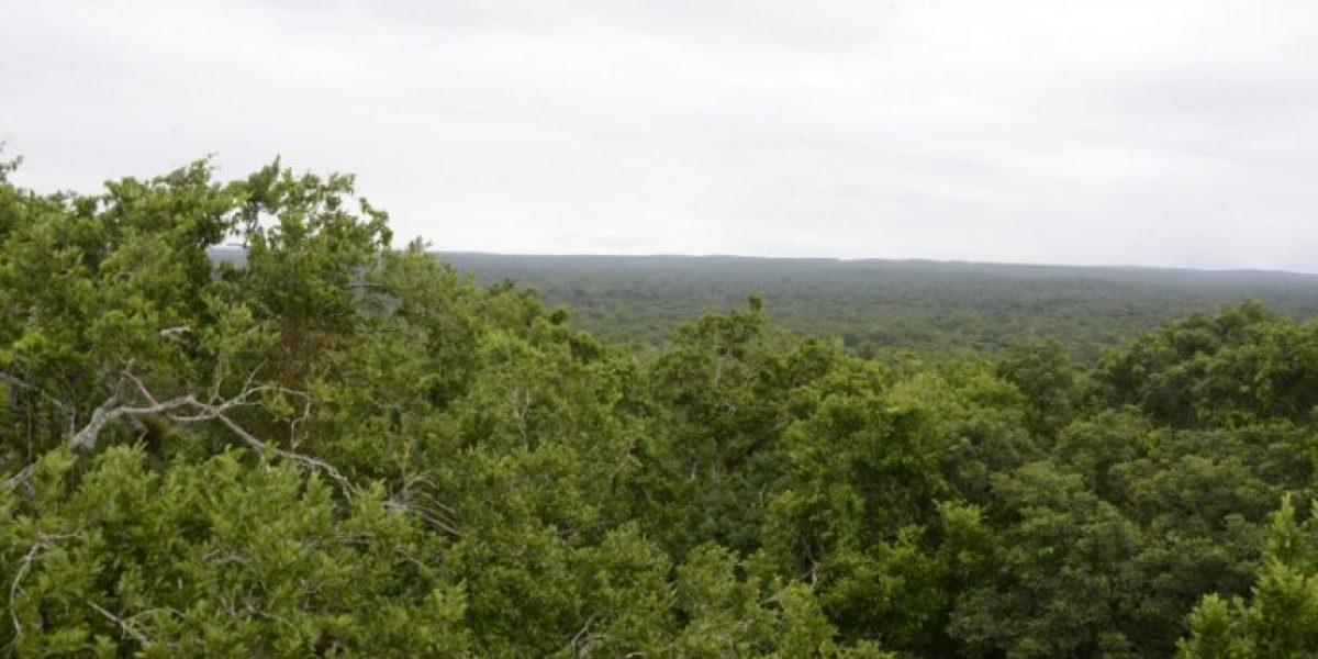 Guatemala se compromete a recuperar 4,54 millones de hectáreas de tierras degradadas