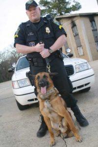 La mayoría de los perros policía son machos, sin castrar para que mantengan su agresividad natural. Foto:Getty Images