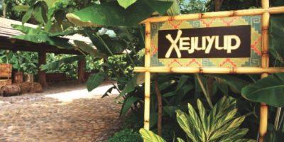 """Disfruta de la armonía del bosque en el nuevo parque ecológico del IRTRA """"Xejuyup"""""""