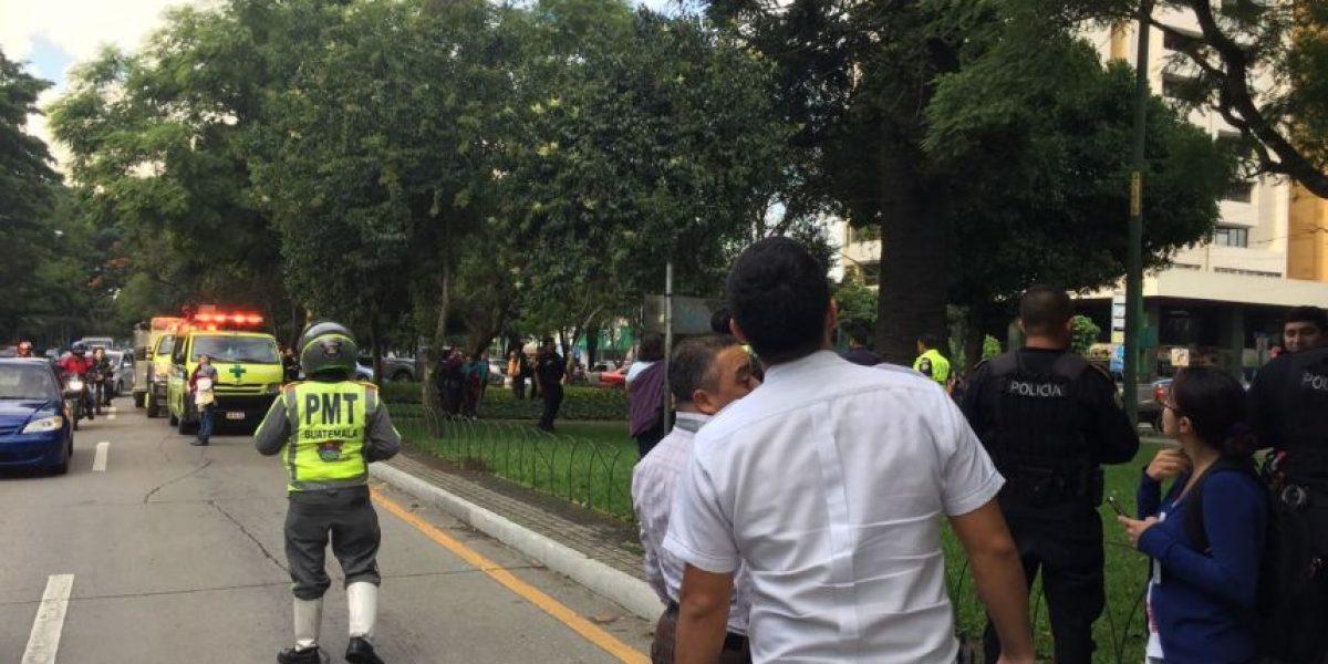 La guacamaya que causó revuelo en la zona 9