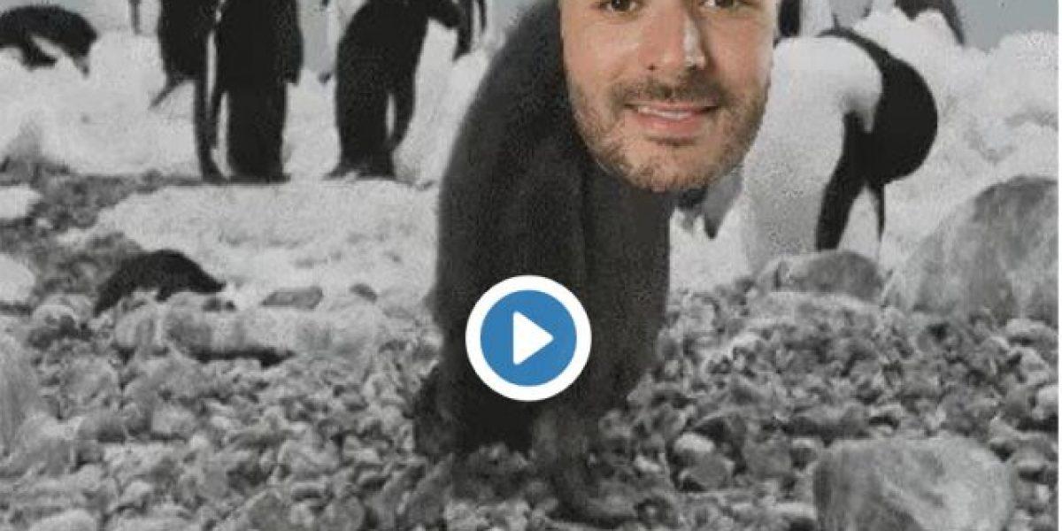 Con memes internautas destrozan a Karim Benzema por su caída