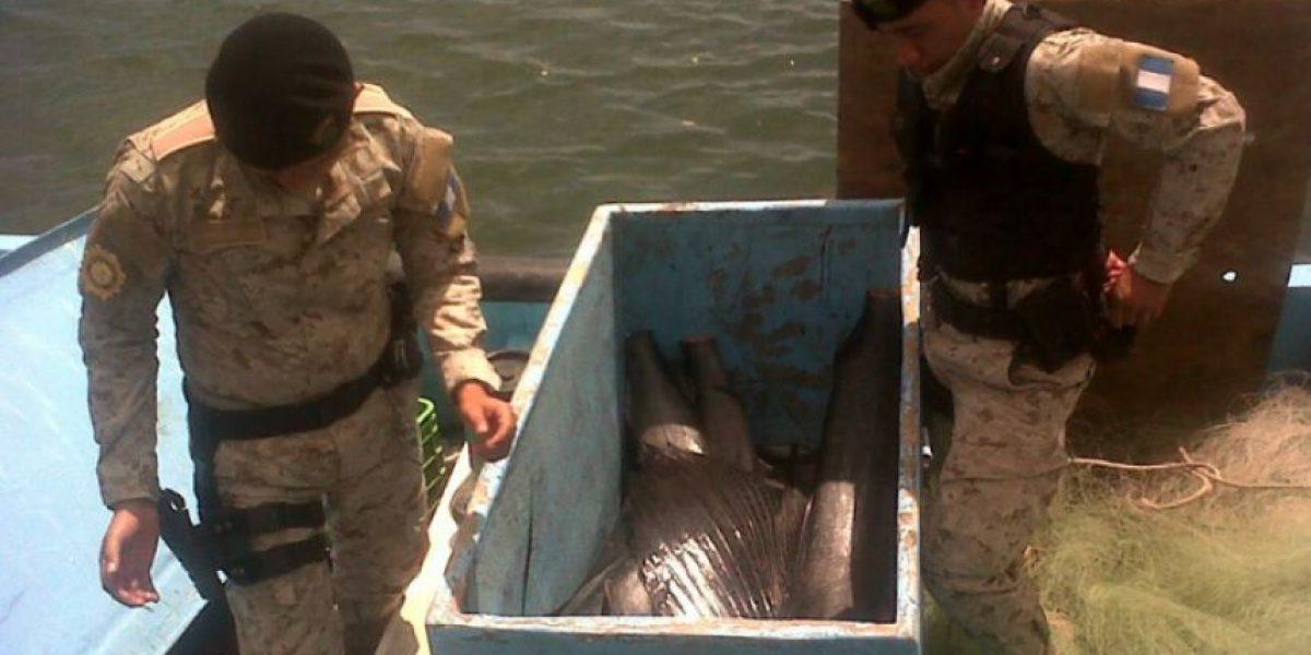 Fueron detenidos con una hielera en la que llevaban cinco ejemplares de pez vela
