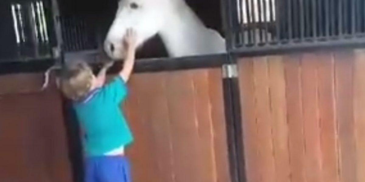 Niño de 7 años vendió limonada por 2 años para comprar un poni... ¡y lo logró!