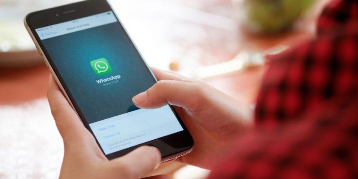 WhatsApp: Trucos para ahorrar datos usando la app