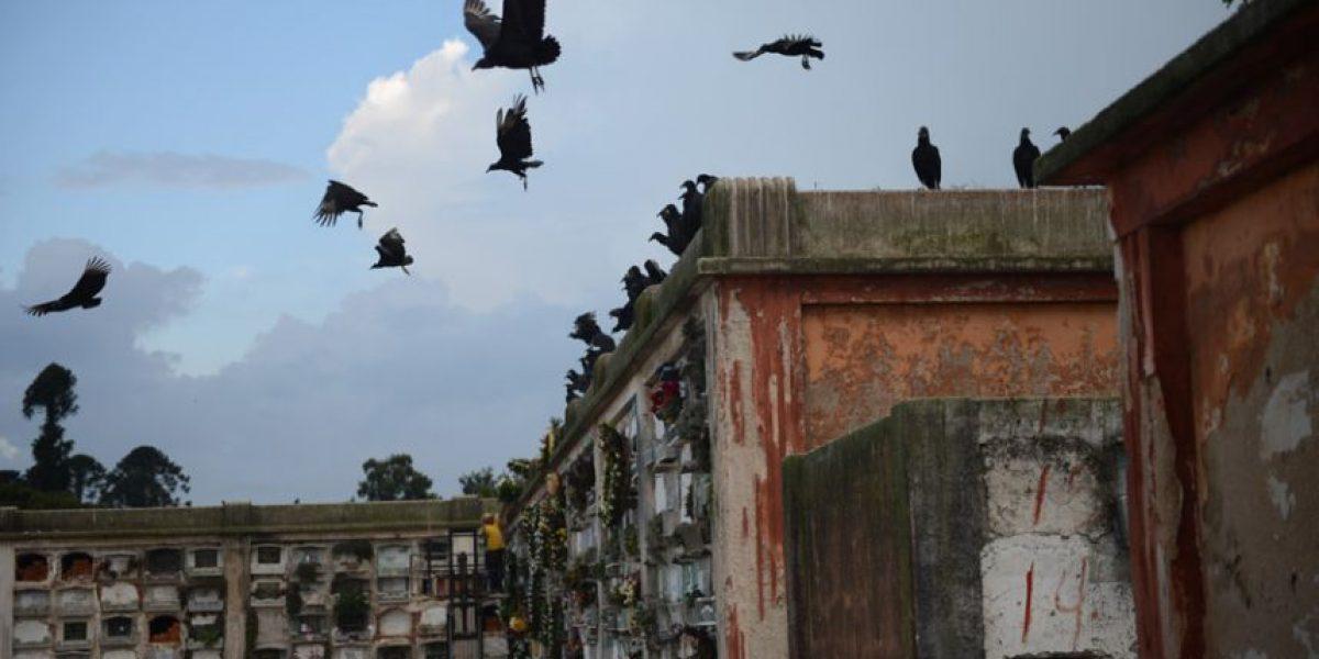 Guatemaltecos recuerdan a sus seres queridos difuntos