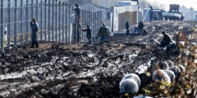 Prisioneros construyen una nueva valla en la frontera húngara-serbia cerca de la aldea de Gara, el 27 de octubre de 2016, como parte de los esfuerzos para evitar que refugiados e inmigrantes entren libremente al país. Foto:CSABA SEGESVARI/afp.com