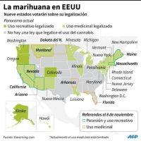 La marihuana en EEUU Foto:Colin HENRY, Adrian LEUNG, Nicolas RAMALLO/afp.com