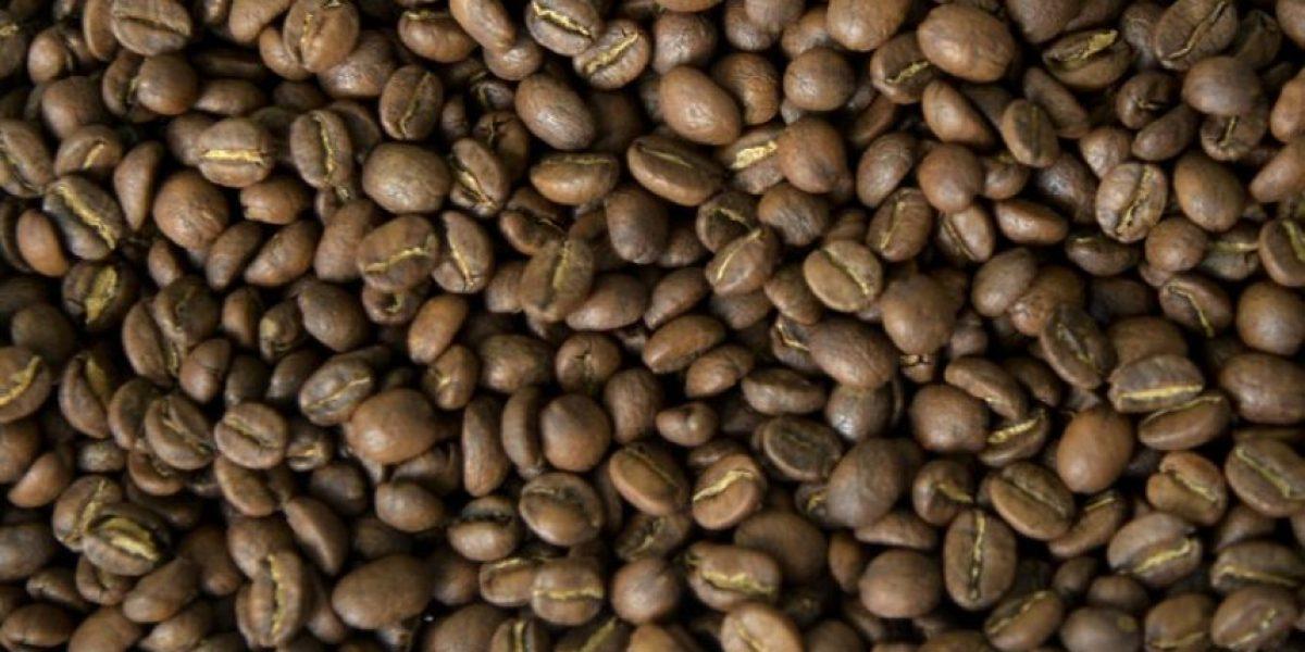 Valor de la cosecha de café en Colombia registrará un récord en 2016