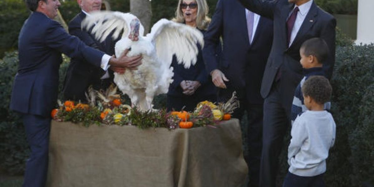 Las bromas del presidente Obama sobre los pavos y sus hijas en su último Día de Acción de Gracias