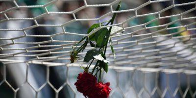 """VIDEO. """"Eternos campeones"""", el homenaje de Chapecoense a sus jugadores"""