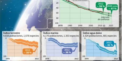 Caída de casi un 60% de las especies de vertebrados Foto:Simon MALFATTO, Philippe MOUCHE, Marimé BRUNENGO/afp.com