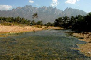 Una vista de la isla virgen de Socotra, en Yemen, del 27 de marzo de 2008 Foto:Khaled Fazaa/afp.com