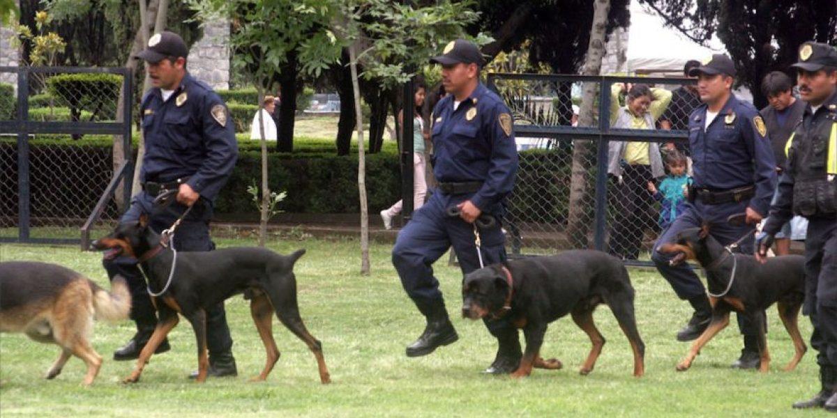 VIDEO. Enternecedora historia, policías lloran al despedirse de sus compañeros caninos