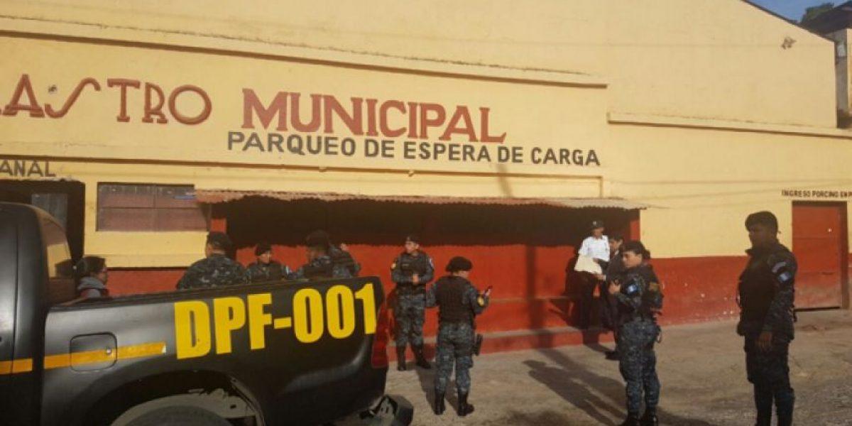 Realizan allanamientos por contrabando de cerdos