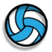 Pelota de vóleibol. Foto:emojipedia.org