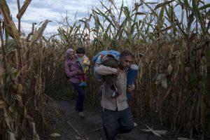 Más que un fenómenos migratorio es una crisis de refugiados, ya que la mayoría viene de zonas en conflicto como Siria, Irak o Afganistán. Foto:Getty Images