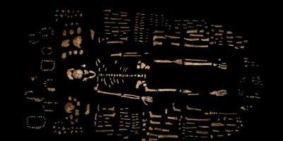 """Se cree que por sus características, podría ser el primero de la especie """"Homo"""" Foto:AP"""