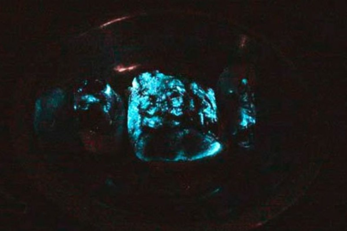 Ya por la noche notaba una luz resplandeciente sobre la mesa. Se acercó y descubrió que era la carne. Foto:Vía chinasmack