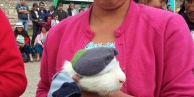"""Fotos: Vean por qué estos roedores y su """"Fashion Week"""" se hicieron virales"""