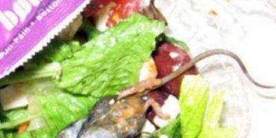 La rata dentro del burrito. Foto:vía Imgur